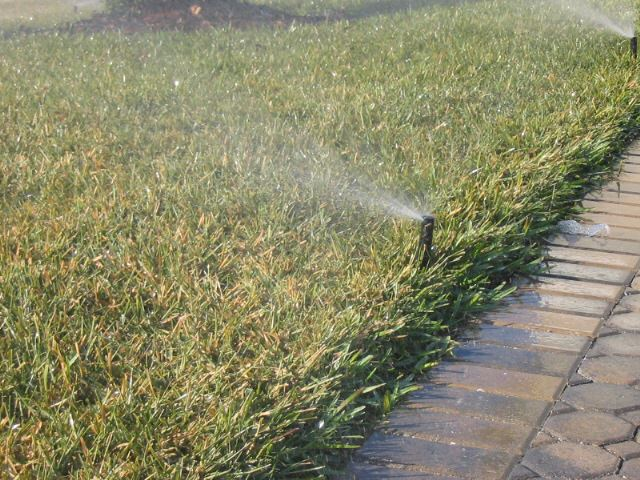Water sprinkler on the grass.